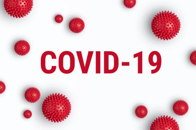Pengertian Corona Virus